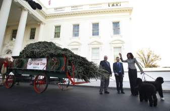 2015 - A primeira dama Michelle Obama recebe a árvore de Natal da Casa Branca. Foto: Yuri Gripas/AFP/Getty Images